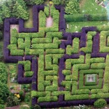 Get lost in a maze!