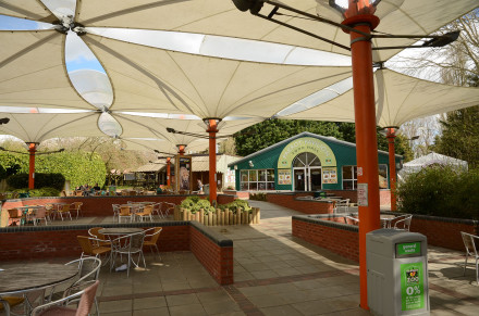 The Cafe and Eating Area at Banham Zoo, Norfolk