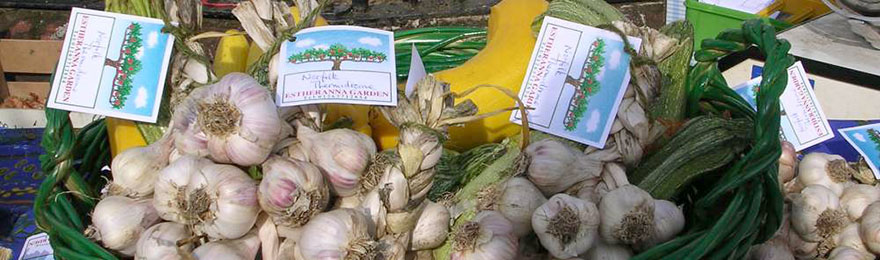 Farmers' Markets in Norfolk