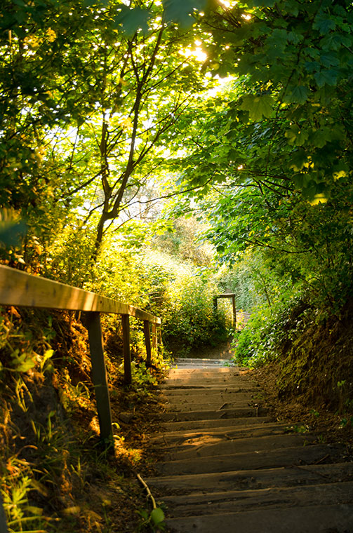 Path to the beach from Happy Valley, Cromer, Norfolk. Puts you through your  paces!