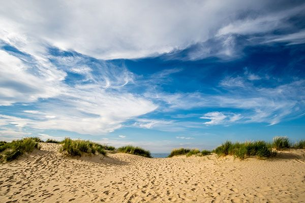The dunes at Wells-next-the-Sea (photo by Neal Trafankowski)